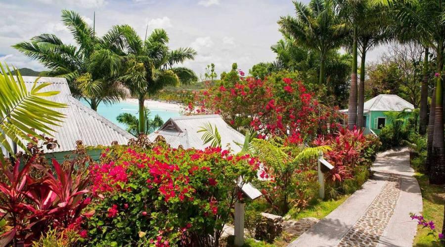 Cocos Hotel - giardini