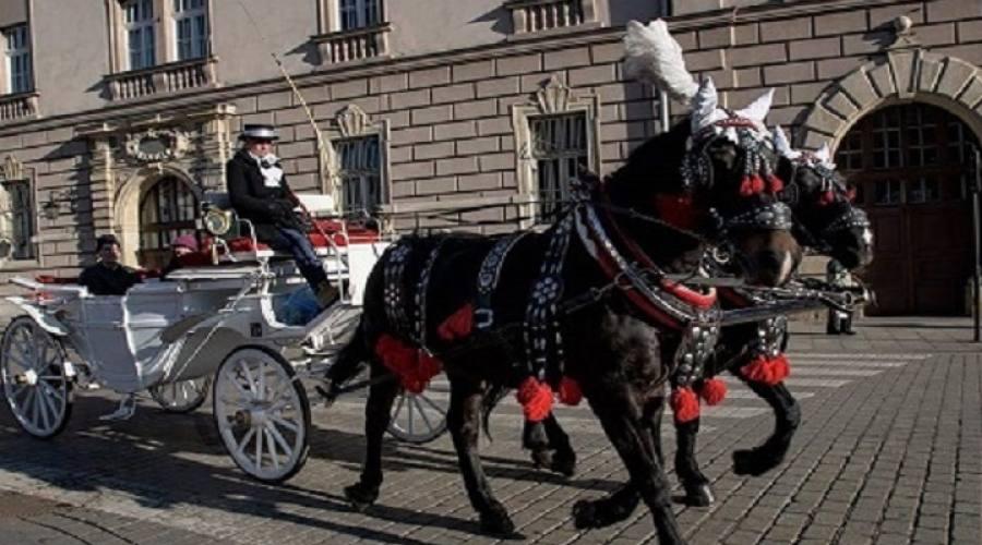 Tipiche carrozze per tour della città
