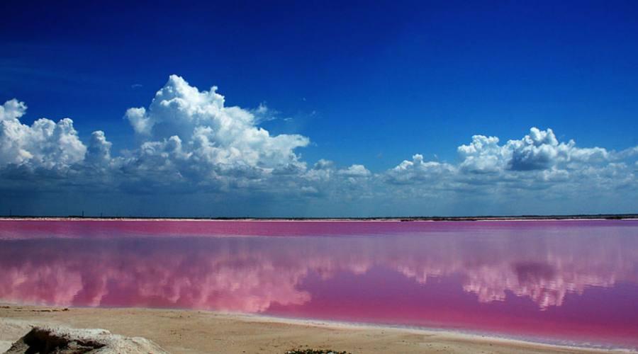 Escursioni: Laguna Rosada (Yucatan)