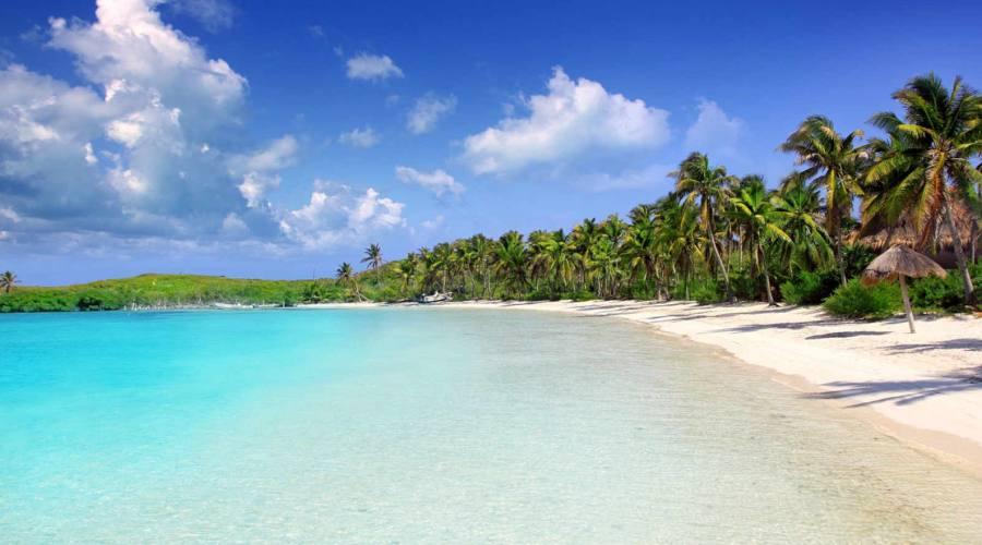 Escursioni: Parco Naturale Isla Contoy