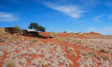 Namib in libertà