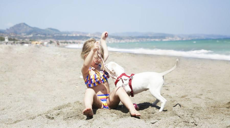 Si gioca in spiaggia