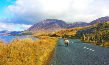 Il Connemara e le Isole Aran viaggio di gruppo in bici