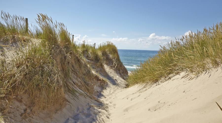 Skagen dune di sabbia