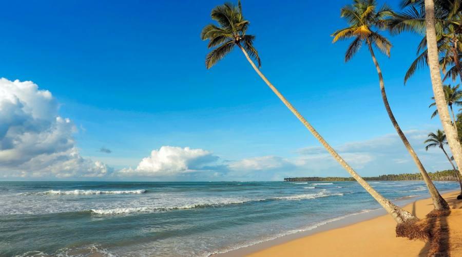 Spiaggia Viva Samana