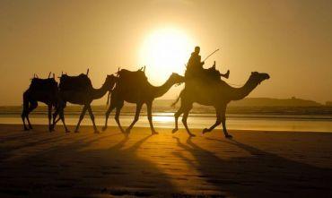 Una combinazione unica: il fascino del deserto e il comfort del lusso