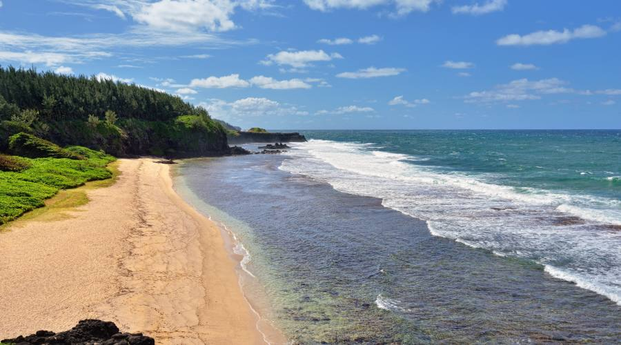 Mauritius: Le spiagge di Gris Gris