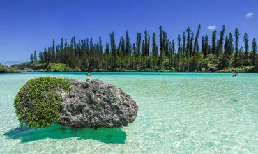 Isola dei Pini e Crociera in Catamarano