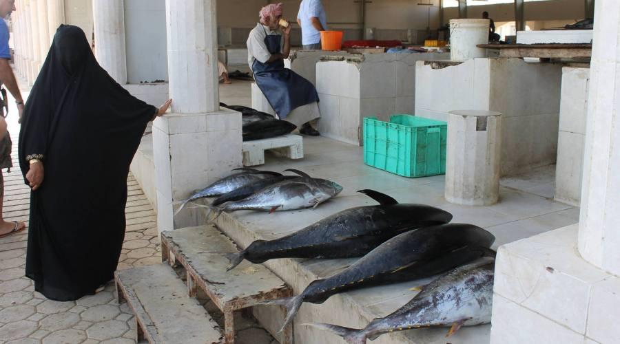 souq di Muscat - mercato del pesce