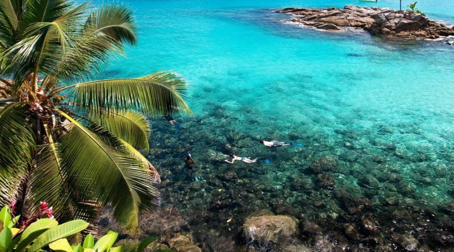 Snorkeling presso il resort