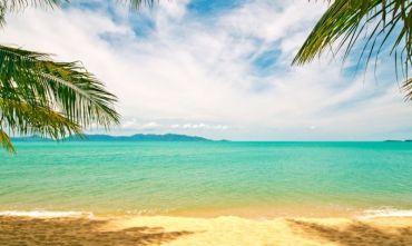 L'isola delle Palme