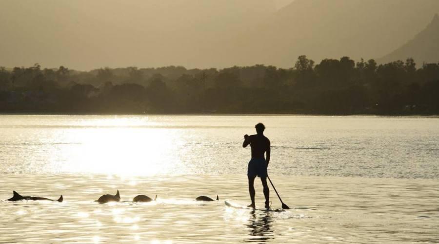 Stand up Paddle tra i delfini nella Baia di Tamarin