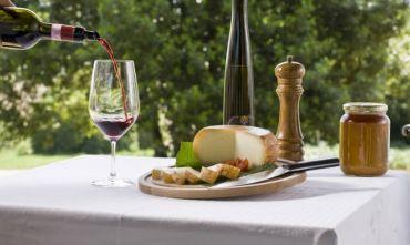 Week End fra olio e vino: i Tesori della Lucchesia