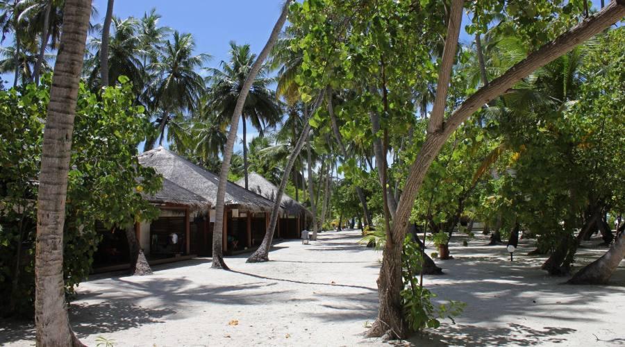 Interno isola