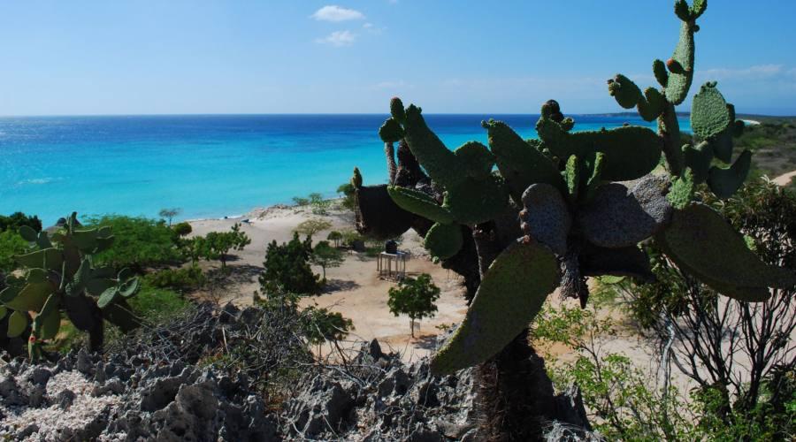 Bahia de Las Aguilas Repubblica Dominicana
