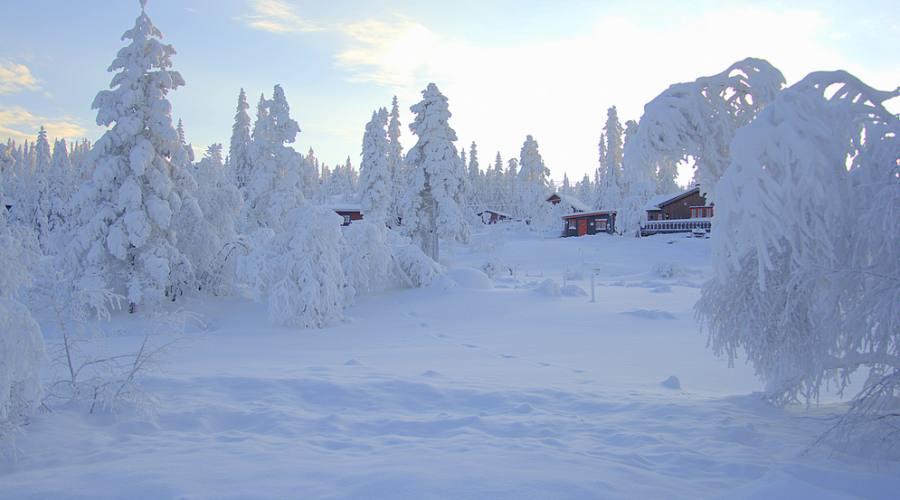 Rovaniemi Lapponia Babbo Natale.Vacanza Da Babbo Natale Nella Magia Della Lapponia Finlandese