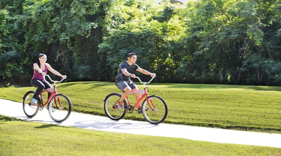 Viva Atzeca: Bici