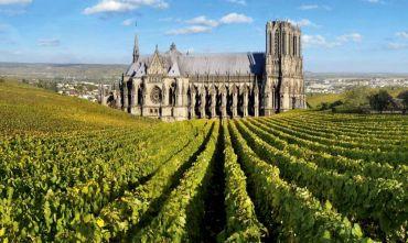 Nelle terre di champagne e pregiati vini rossi