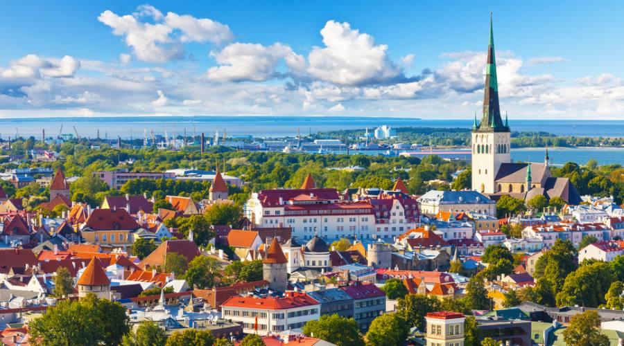 Estonia Tallin vista aerea della città vecchia