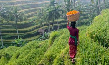 Bali Explorer e Nusa Lembongan