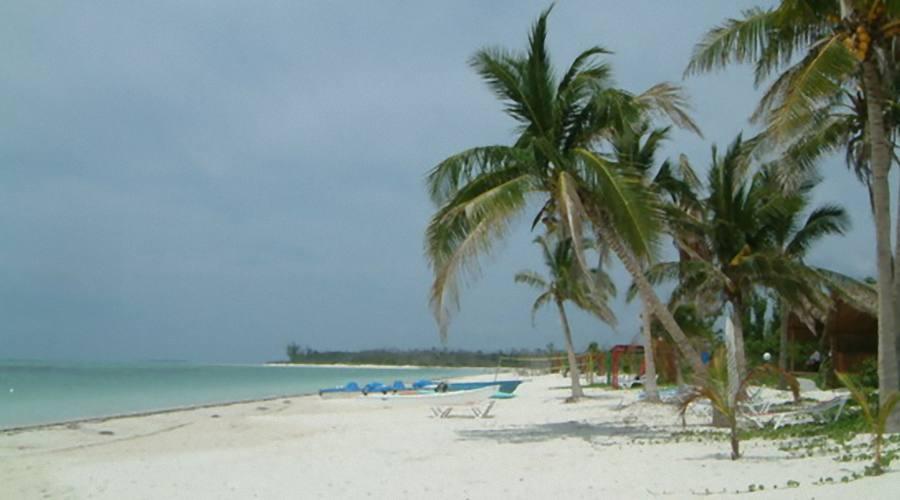 La spiaggia, Cayo Levisa