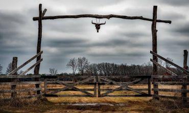 Viaggio alla scoperta dei cowboy texani