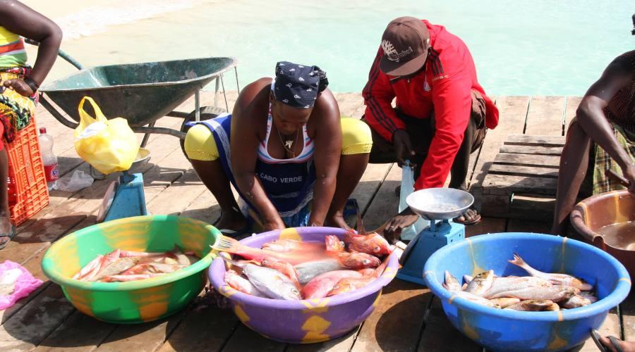 Mercato del pesce a Sal
