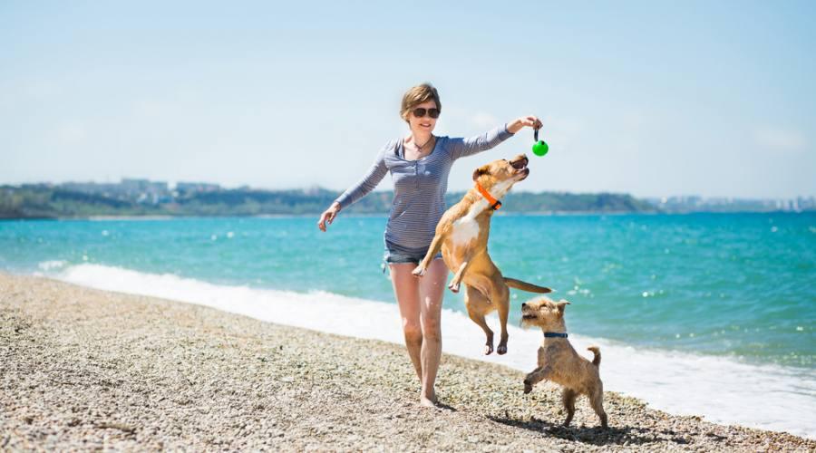 Giochi in spiaggia...