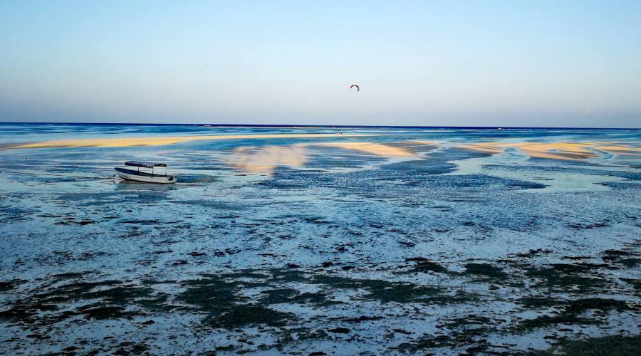 La bassa marea
