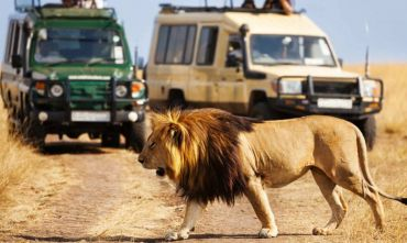 NORTHERN BOTSWANA CAMPING MOBILE SAFARI