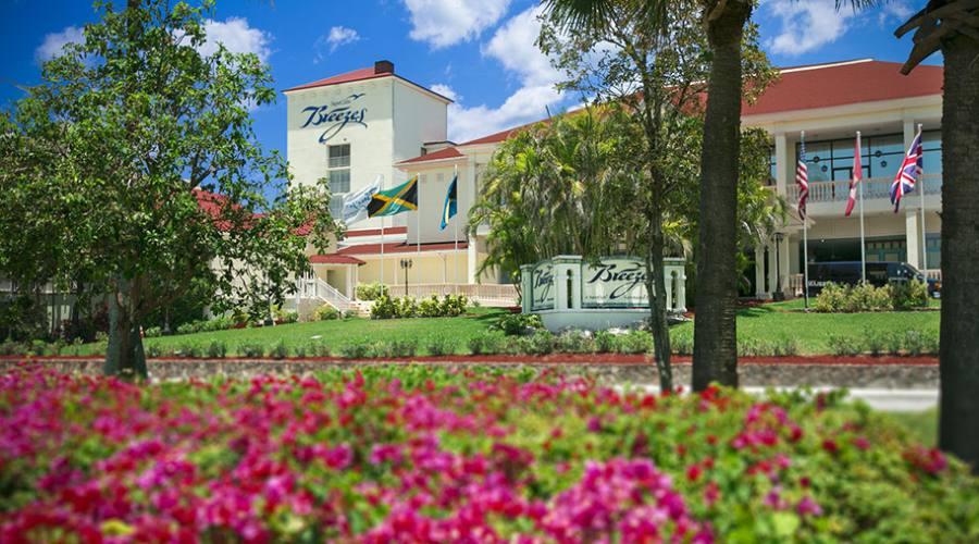 Il bellissimo giardino dell'Hotel