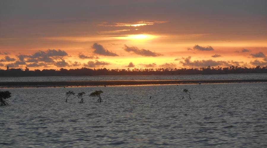 tramonto sine-saloum