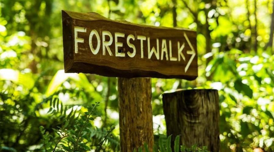 sentiero naturalistico