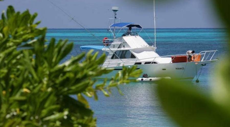 barca per la pesca