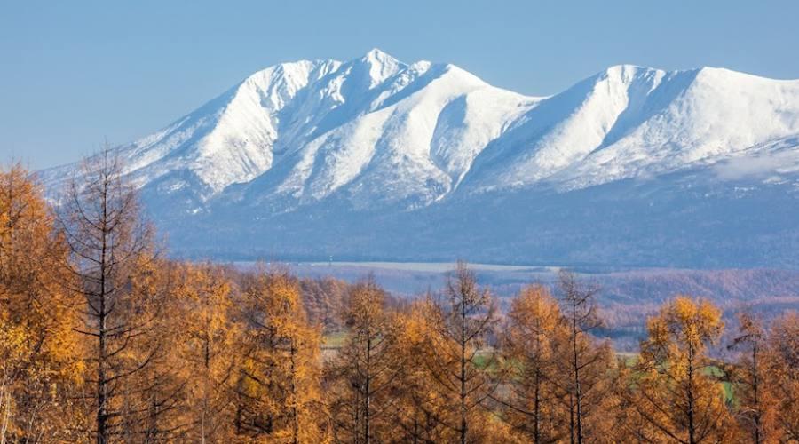 Alpi Giapponesi