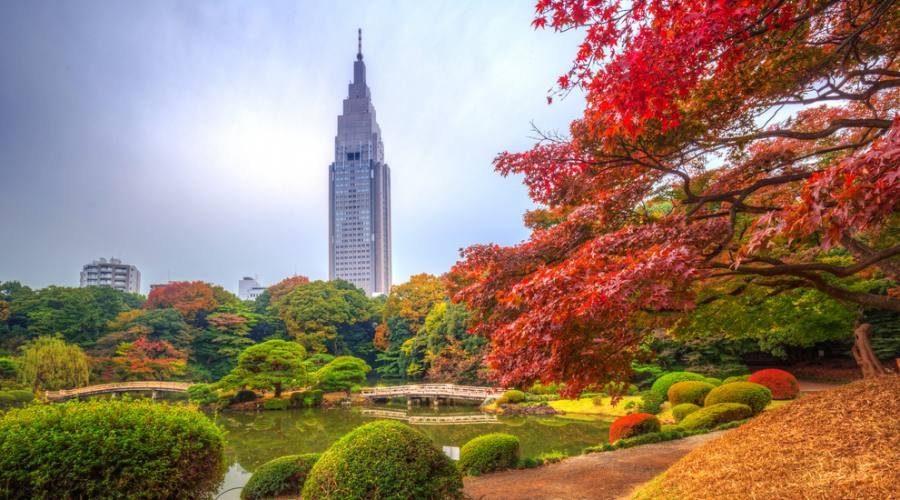 Il parco Shinjuku di Tokyo