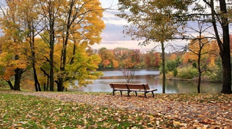 Parco sulla Vistola