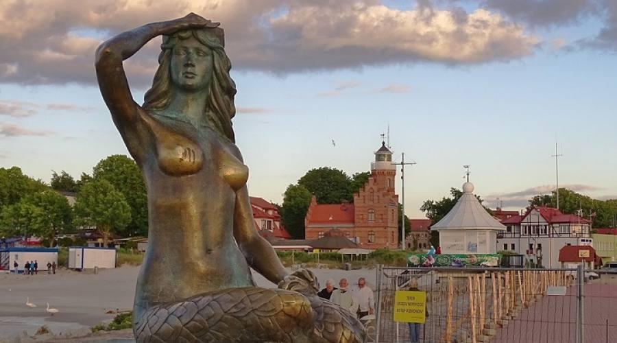 Sirenetta polacca