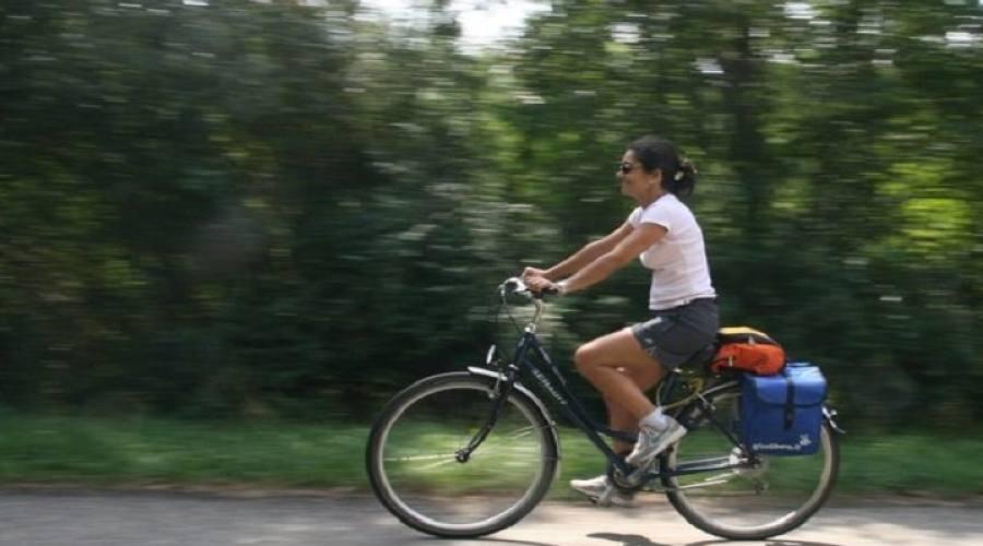 Bici per girare la città