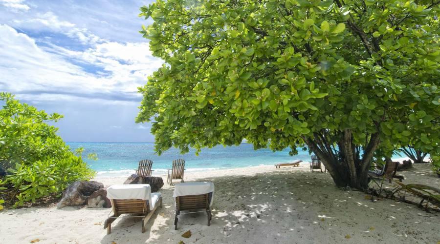 La spiaggia  privata con sedie