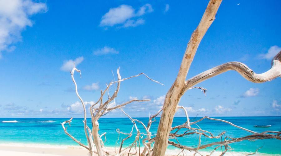 Particolari della spiaggia