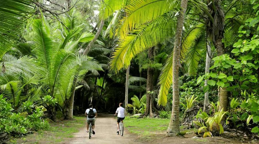 I sentieri dell'isola