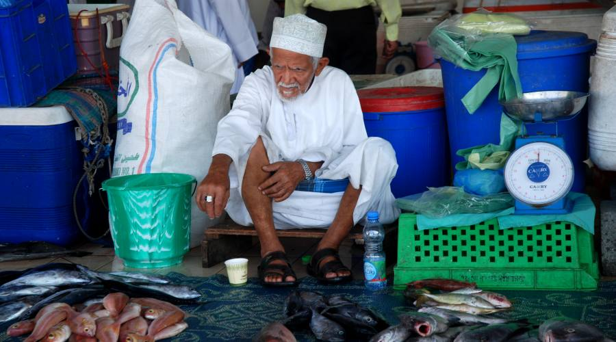 Fish Maket