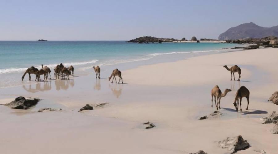 Salalah: spiaggia
