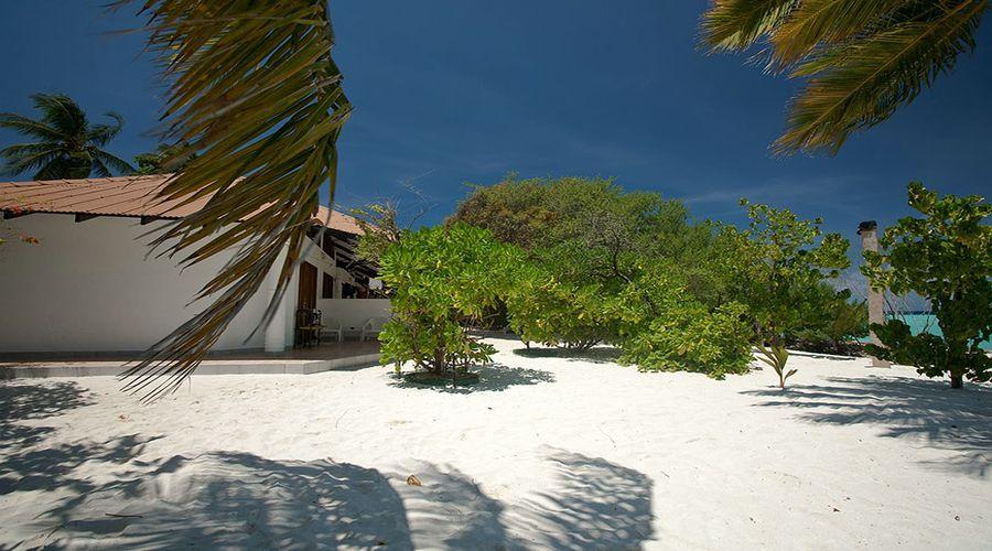 interni isola