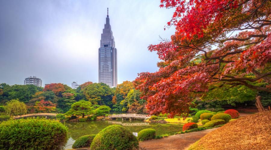 Il parco Shinjuku a Tokyo