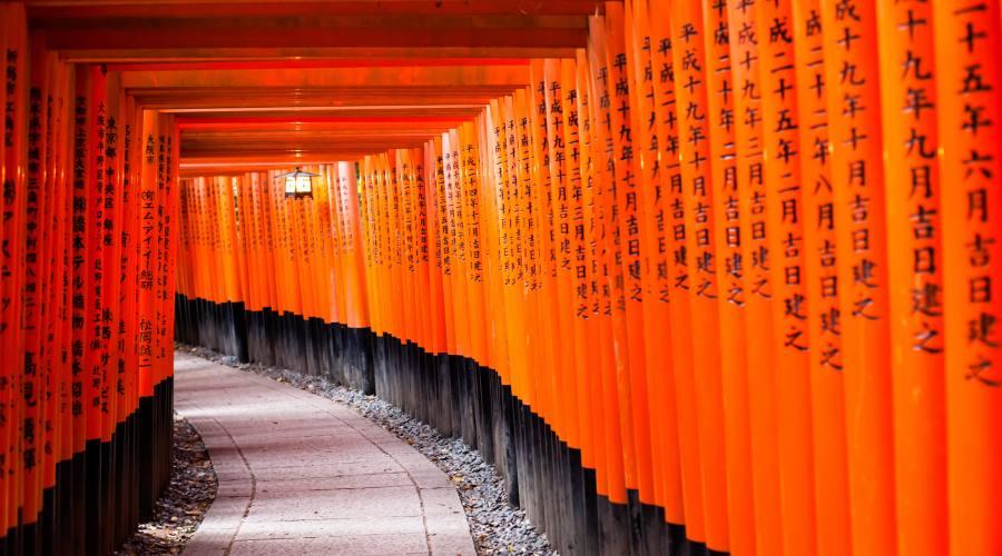 Il Tempio Fushimi Inari a Kyoto