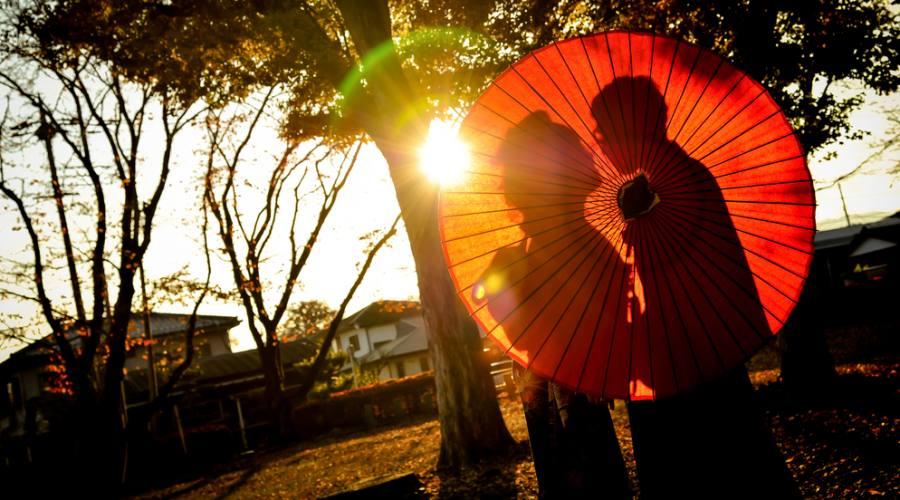 Tipica cerimonia Giapponese