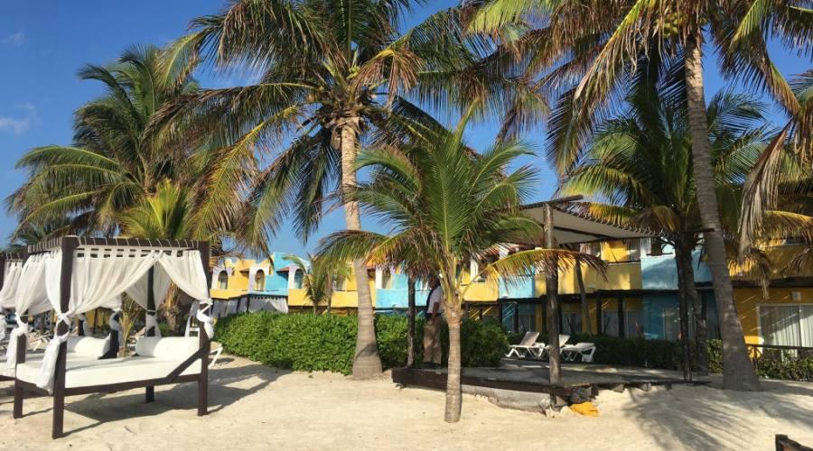 Bravo PavoReal: Spiaggia di Tulum