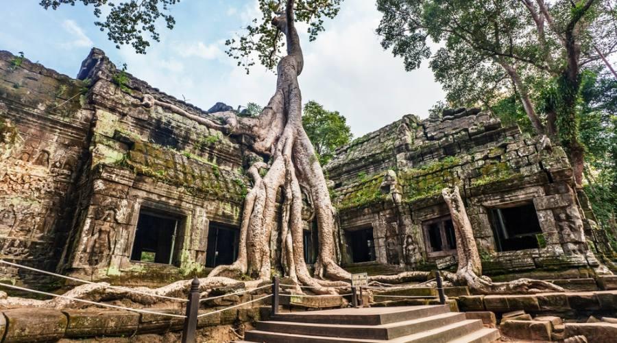 Particolare del Ta Prohm Temple ad Angkor